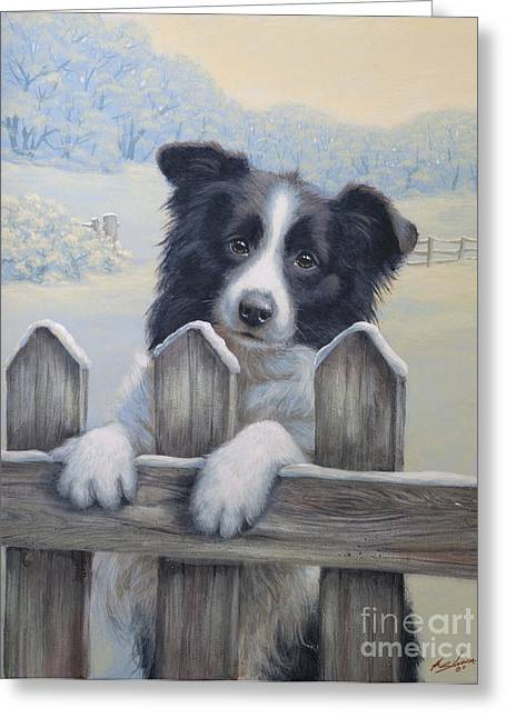 Collie Greeting Cards - Ready for work Greeting Card by John Silver