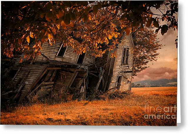 Ready To Fall Greeting Card by Danielle Denham