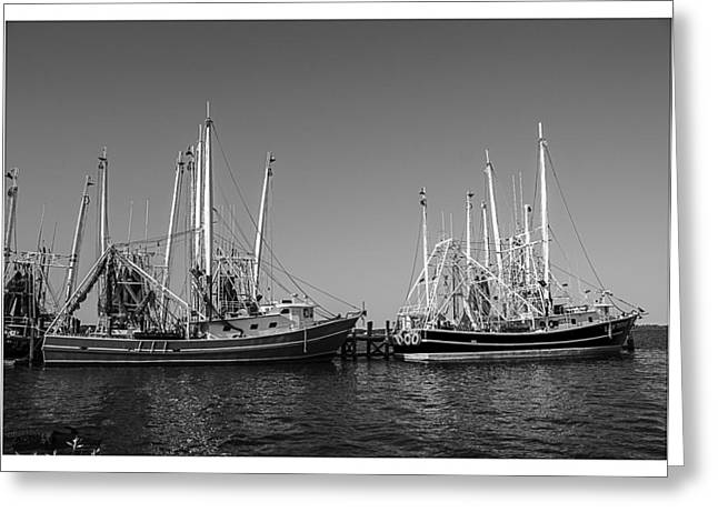 Masts Greeting Cards - Ready to Go Out Greeting Card by Barry Jones