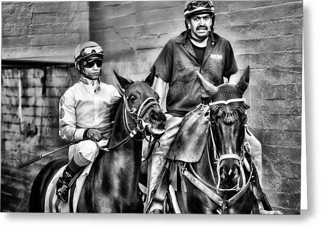 Race Horse Greeting Cards - Ready to Race Greeting Card by Camille Lopez