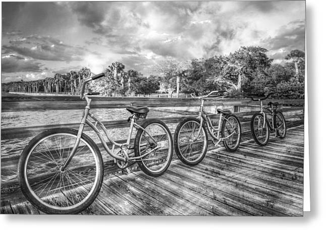 Three Trees Greeting Cards - Ready to Ride in Black and White II Greeting Card by Debra and Dave Vanderlaan