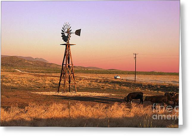 Dude Ranch Greeting Cards - Real West Texas  Greeting Card by Paul Anderson