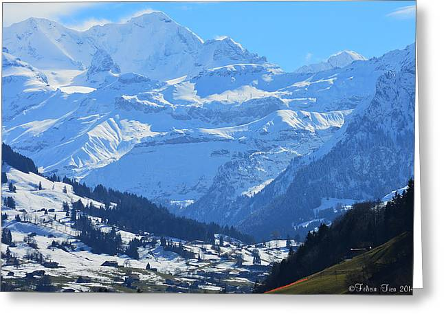 Swiss Photographs Greeting Cards - Realm of hope Greeting Card by Felicia Tica