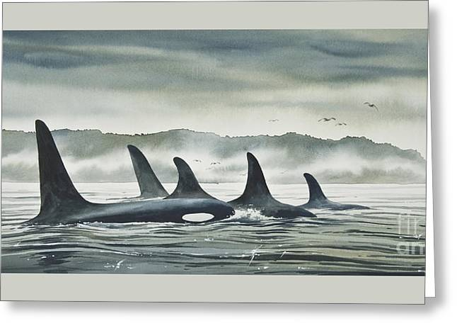 Orca Greeting Cards - Realm of the ORCA Greeting Card by James Williamson