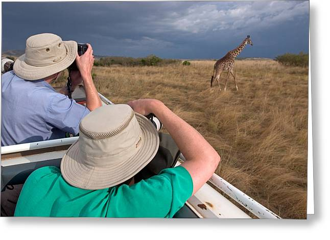 Caucasian Ethnicity Greeting Cards - Rear View Of Two Safari Photographers Greeting Card by Panoramic Images