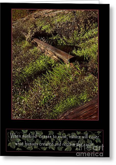 Overgrown Greeting Cards - Reclaim no.4 Greeting Card by Peter Piatt