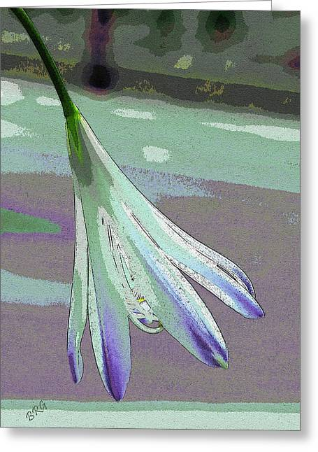 Geometric Digital Art Photographs Greeting Cards - Reclining Lily Abstract Greeting Card by Ben and Raisa Gertsberg