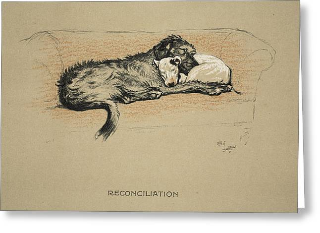 Terrier Dog Drawings Greeting Cards - Reconciliation, 1930, 1st Edition Greeting Card by Cecil Charles Windsor Aldin