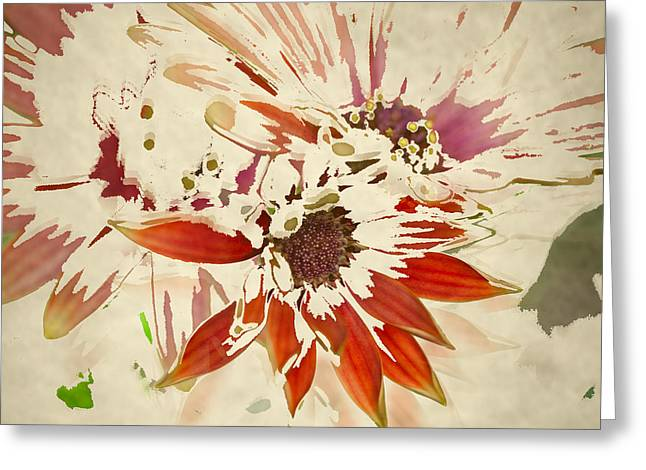 Transitional Greeting Cards - Reconstructed Flower #5 Greeting Card by Bonnie Bruno
