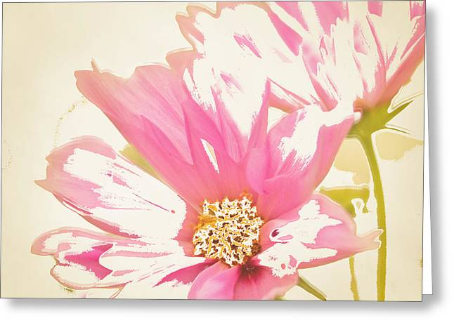 Reconstructed Flower #6 Greeting Card by Bonnie Bruno