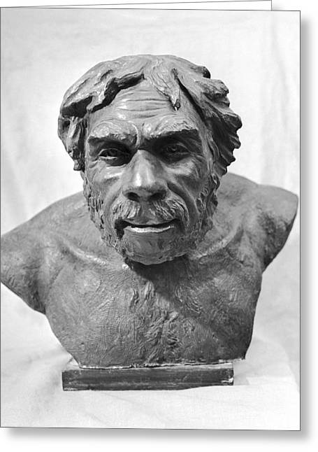 Adaptation Greeting Cards - Reconstruction of Neanderthal Man Greeting Card by Science Photo Library
