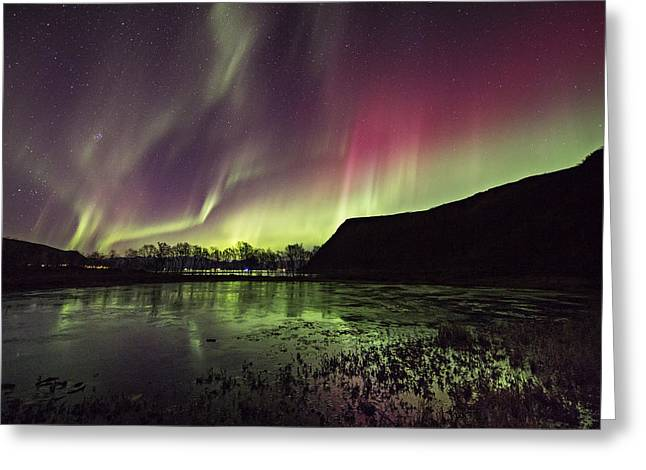 Sortland Greeting Cards - Red and green Auroras Greeting Card by Frank Olsen