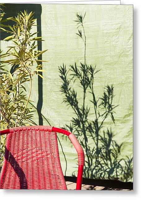 Complimentary Greeting Cards - Red and green - chair wall and shadow of a plant Greeting Card by Matthias Hauser