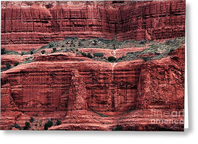 Red And Green Photographs Greeting Cards - Red and Green Nature Greeting Card by John Rizzuto