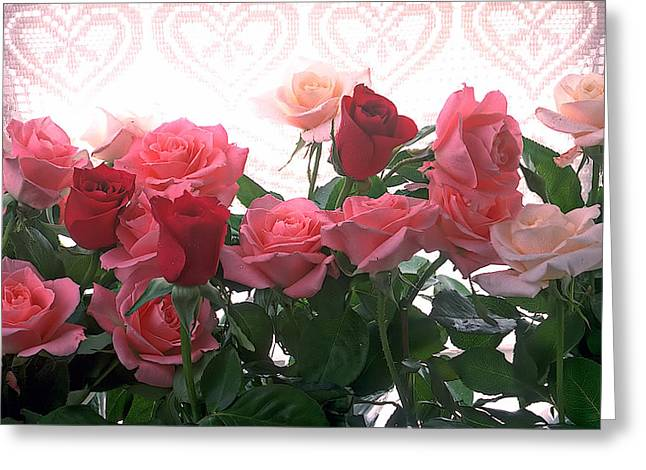 Roses Greeting Cards - Red and pink roses in window Greeting Card by Garry Gay