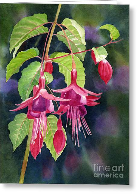 Violet Art Greeting Cards - Red and Purple Fuchsias with Background Greeting Card by Sharon Freeman