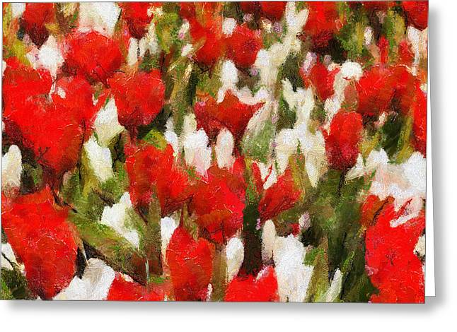 Red And White Flowers Greeting Card by Yury Malkov
