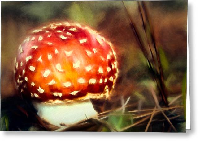 Toadstools Mixed Media Greeting Cards - Red and WhiteToadstool Greeting Card by John K Woodruff