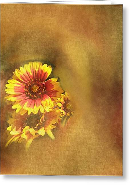 Award Winning Art Greeting Cards - Red And Yellow Canvas Greeting Card by Dennis Buckman