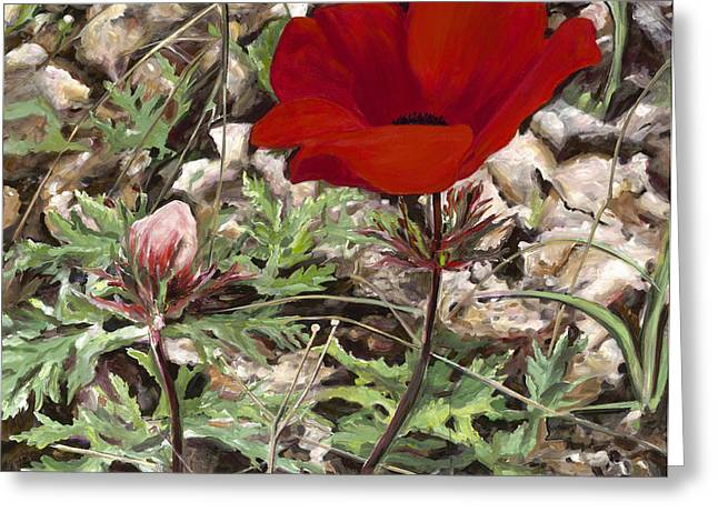 Anemone Coronaria Greeting Cards - Red Anemone  Greeting Card by Nurit Shany