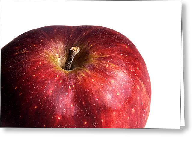 Apple Art Greeting Cards - Red Apple on White 1 Greeting Card by Rebecca Brittain