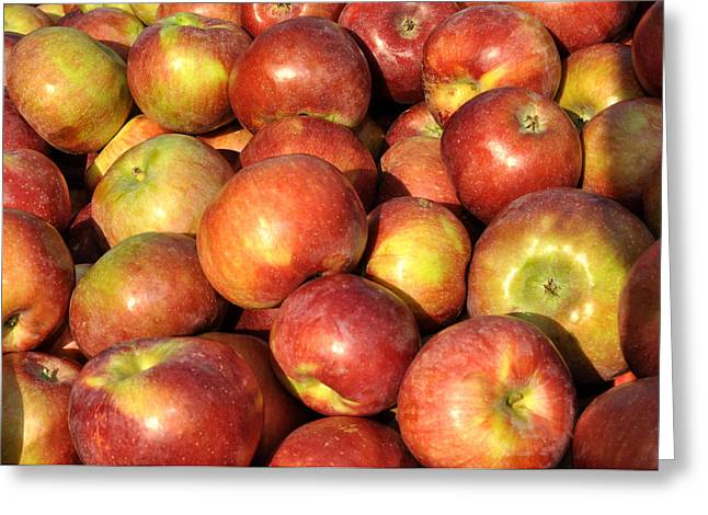 Union Square Greeting Cards - Red apples Greeting Card by Diane Lent