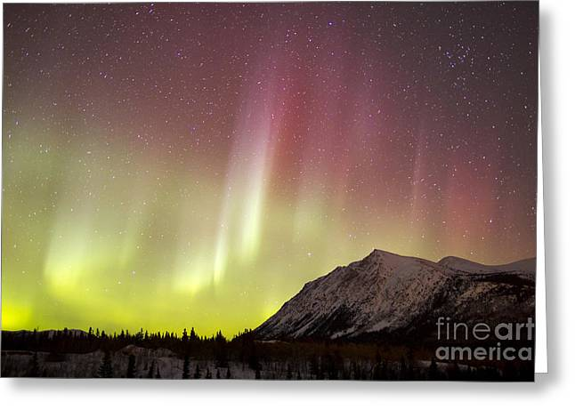 Red Aurora Borealis Over Carcross Greeting Card by Joseph Bradley