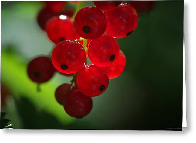 Frucht Greeting Cards - Red balls of fire Greeting Card by Philippe Meisburger