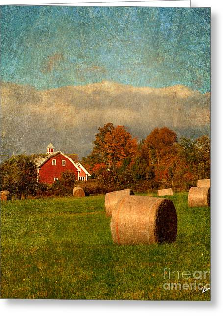 Old Maine Barns Greeting Cards - Red Barn  Greeting Card by Alana Ranney