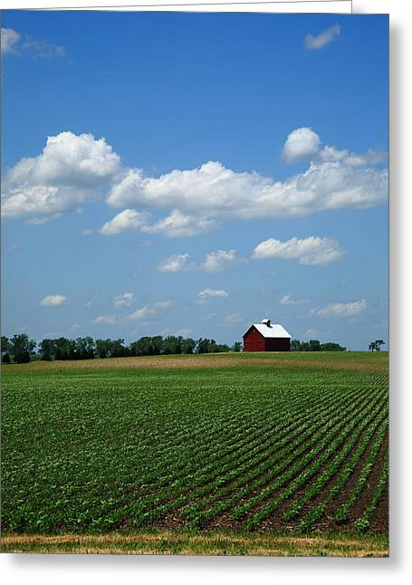 Historic Home Greeting Cards - Red Barn and Cornfield Greeting Card by Frank Romeo