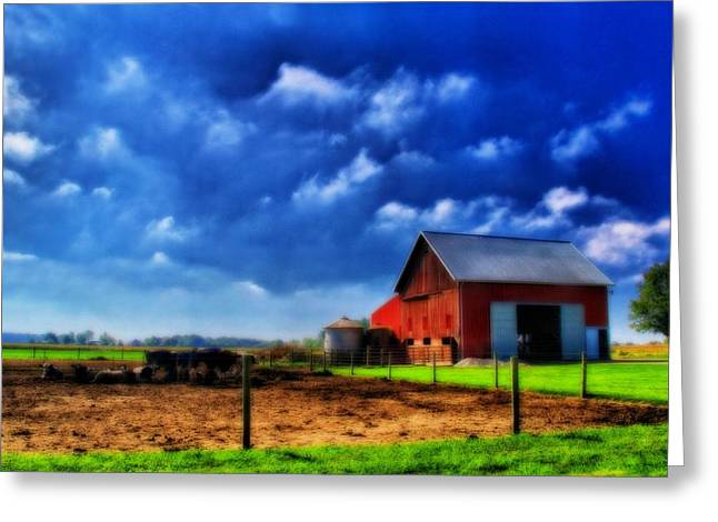 Ohio Red Greeting Cards - Red Barn And Cows In Ohio Greeting Card by Dan Sproul