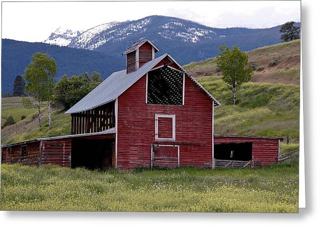 Shed Greeting Cards - Old Red Barn Greeting Card by Athena Mckinzie