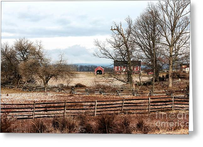 Red Barn In Winter Greeting Cards - Red Barn in the Field Greeting Card by John Rizzuto