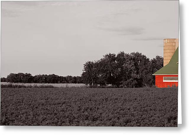Illinois Barns Photographs Greeting Cards - Red Barn, Kankakee, Illinois, Usa Greeting Card by Panoramic Images