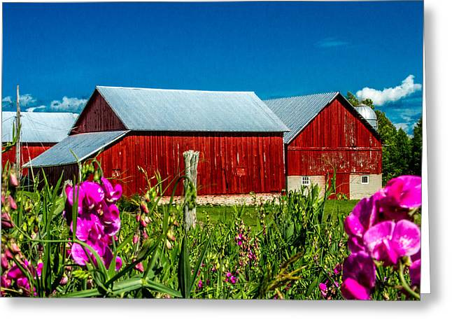 Old Country Roads Greeting Cards - Red Barn on Riggsville Road Greeting Card by Bill Gallagher