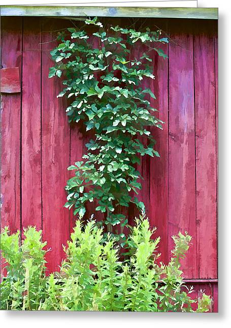 Worn In Greeting Cards - Red Barn Wall Greeting Card by David Letts