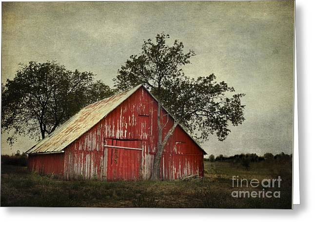 Barn Door Greeting Cards - Red barn with a tree Greeting Card by Elena Nosyreva