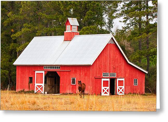 Tin Roof Greeting Cards - Red Barn with Pony Greeting Card by Jamie Anderson