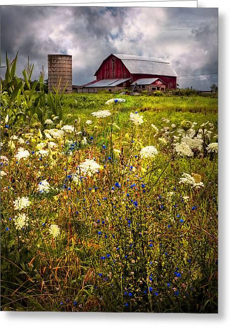 Red Barns In The Wildflowers Greeting Card by Debra and Dave Vanderlaan