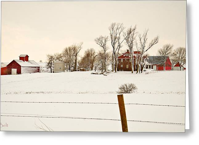 Winter Scenes Rural Scenes Greeting Cards - Red Barns in Winter Greeting Card by Christine Belt