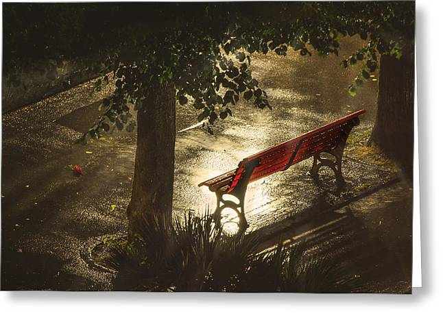 Streetlight Greeting Cards - Red Bench and Rose Greeting Card by Dana Walker