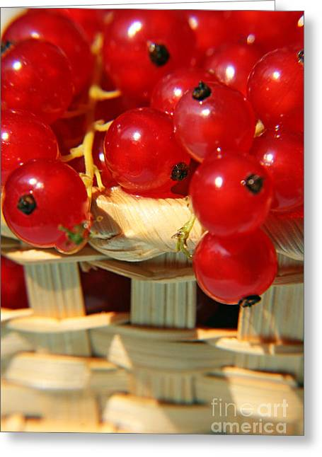 Basket Ball Greeting Cards - Red berries Greeting Card by Lali Kacharava