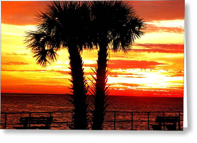 Red Blaze Sunrise Greeting Card by Sheri McLeroy