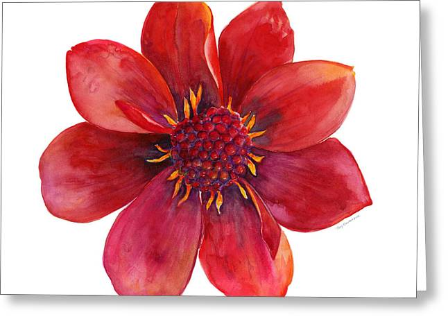 Flower Blossom Greeting Cards - Red Blossom Greeting Card by Amy Kirkpatrick