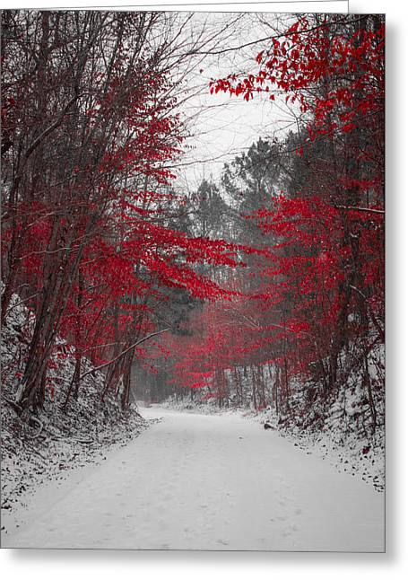 Red Photographs Greeting Cards - Red Blossoms  Greeting Card by Parker Cunningham