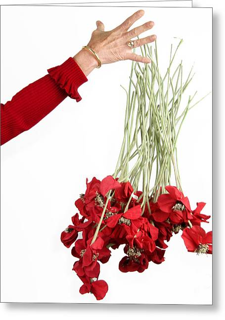 Beautiful People Greeting Cards - Red bouquet Greeting Card by Bernard Jaubert