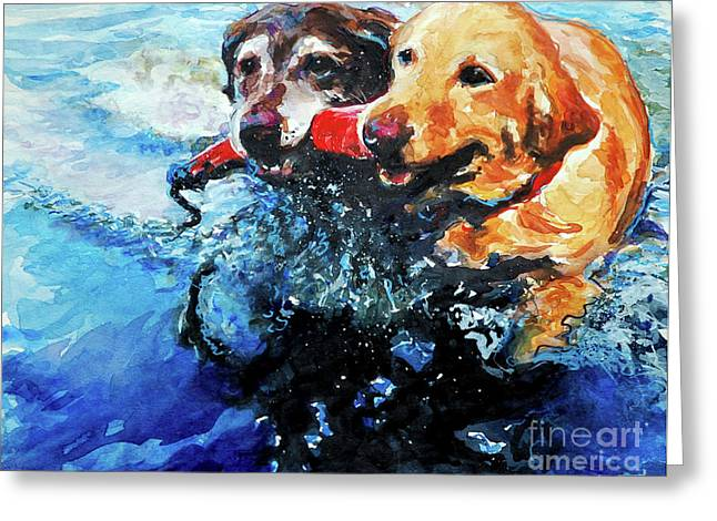 Chocolate Lab Greeting Cards - Red Bumper Greeting Card by Molly Poole