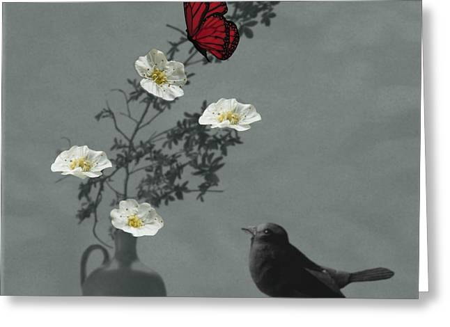 Saint Jean Art Gallery Greeting Cards - Red Butterfly in the eyes of the Blackbird Greeting Card by Barbara St Jean