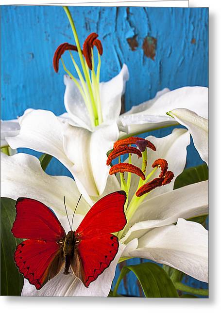 Red Tiger Greeting Cards - Red butterfly on white tiger lily Greeting Card by Garry Gay