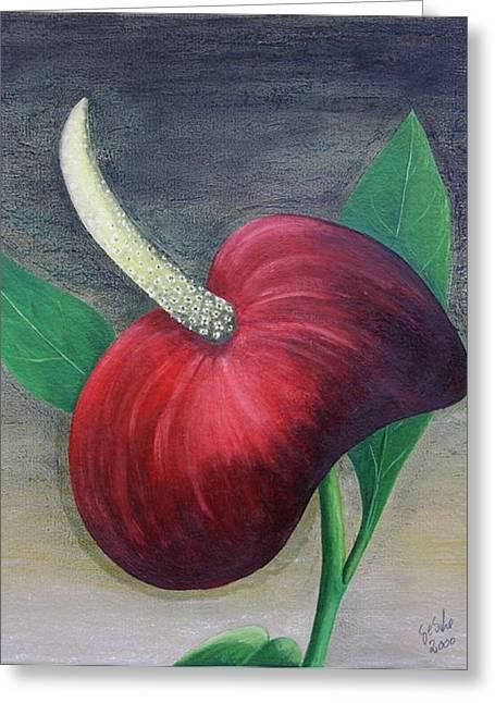 Red Calla Greeting Card by Gertrude Scheffler